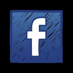 Facebook Fallacy